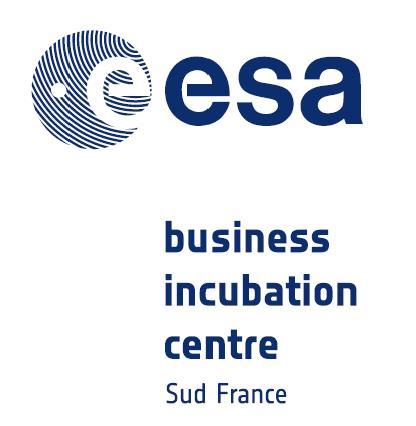 Logo ESA BIC Sud France